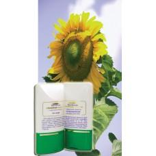 Крем-бальзам «Источник жизни» солнцезащитный